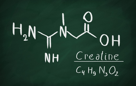 クレアチンは重要なサプリメントだが、腎機能にはマイナス影響も