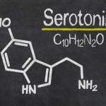筋トレはうつ病にも好影響を与える。その理由は脳内伝達物質にあった!